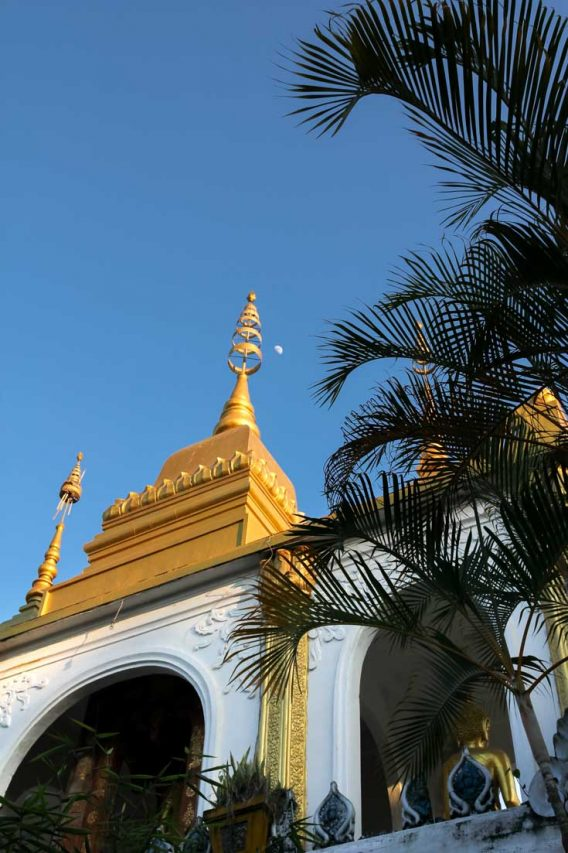 Moon rise over a golden stupa roofline with palm trees in foreground