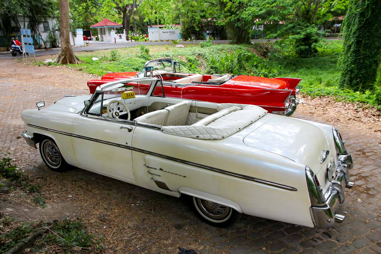 White Mercury and red Chevrolet convertibles parked in lush, green park