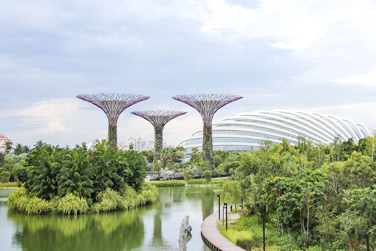 Photo of Supertrees and Conservatory at Gardens by the Bay