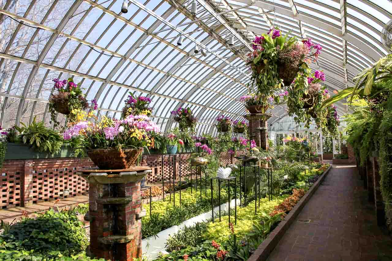 Inside Phipps conservatory, Pittsburgh during its spring orchid showcase