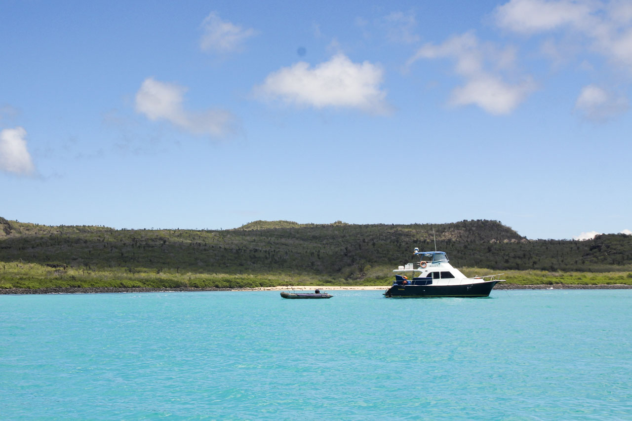 Santa Fe Island Day Trip, Galapagos Islands
