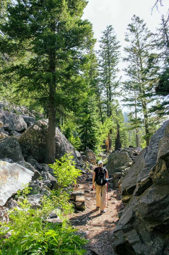 Woman with backpack hiking trail through woods and boulders