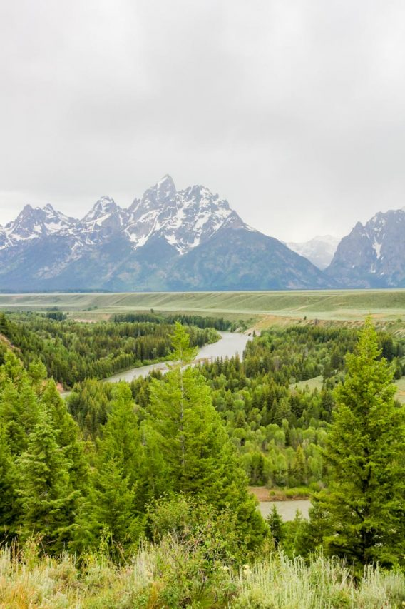 Snake River with Teton Range in the background
