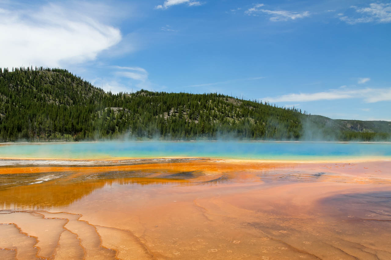 Grand Prismatic Spring with steam rising