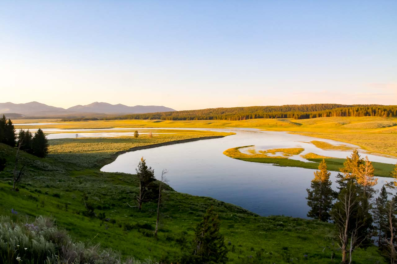Hayden Valley in Yellowstone National Park at sunset