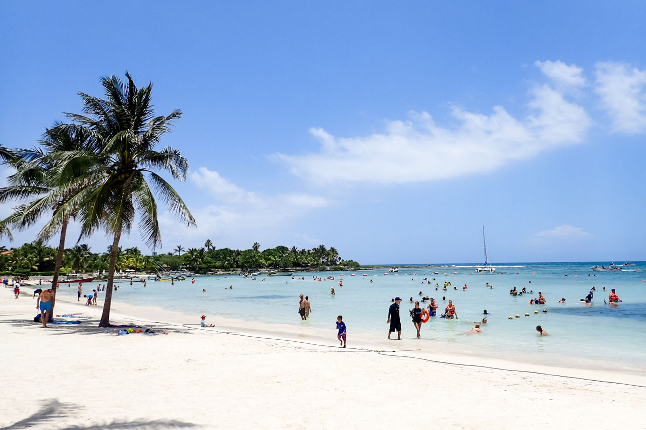 Photo of white sand beach with palm trees and swimmers