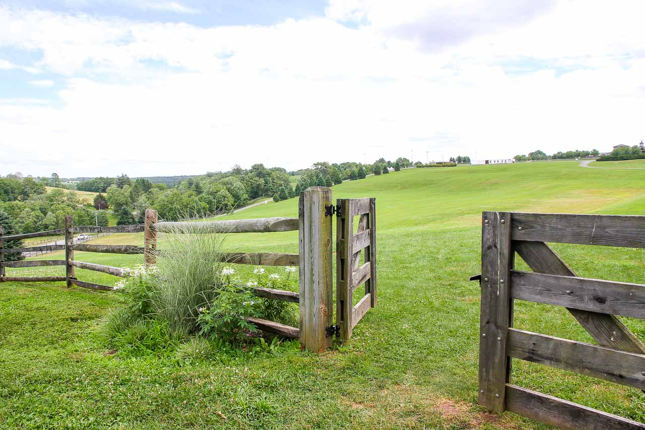 Photo of wooden fence with gate opening to a large, sloping, grassy field