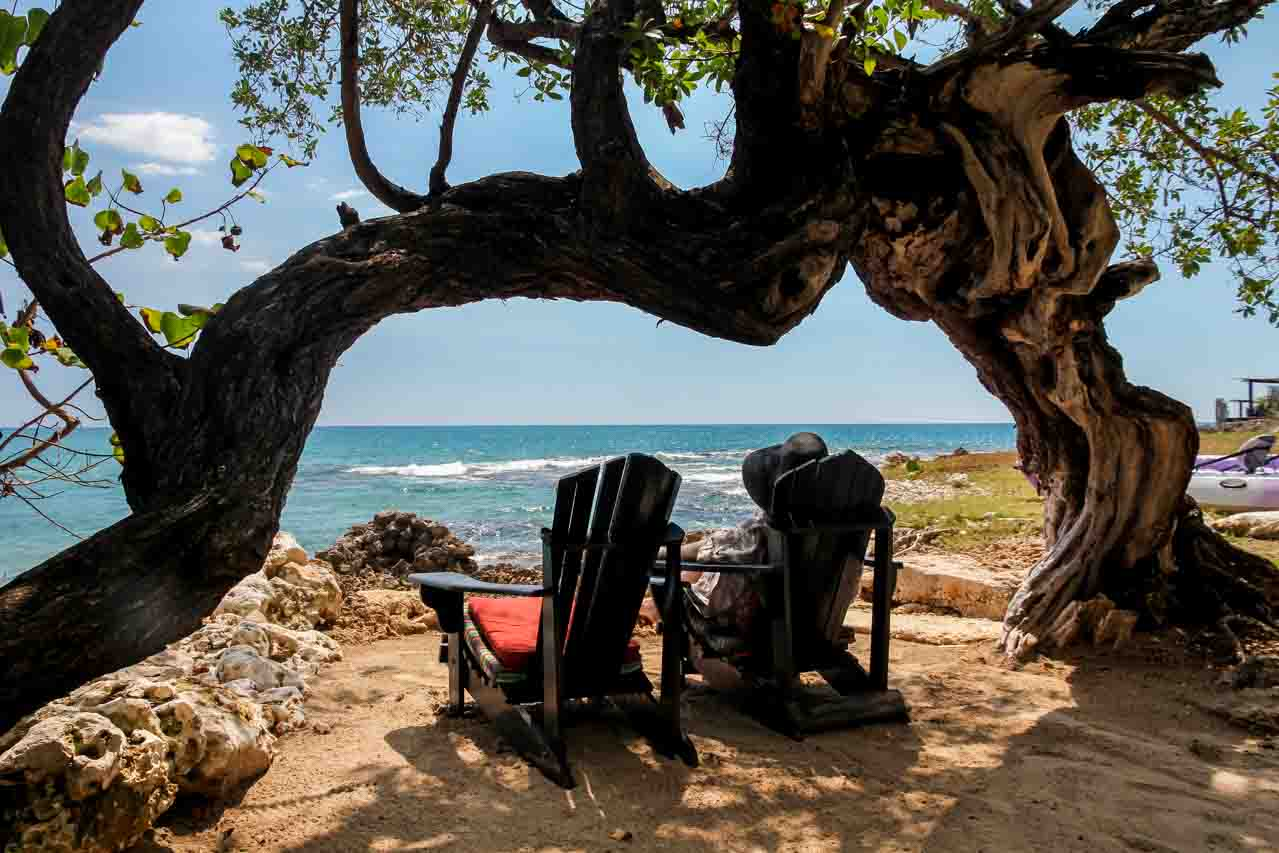 Woman sitting in Adirondack Chair under twisted tree, looking out at ocean