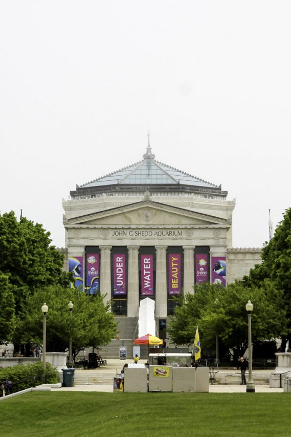 Beaux-arts building with large banners hanging in front