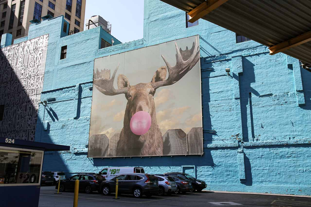 Moose Bubblegum Bubble by Jacob Watts