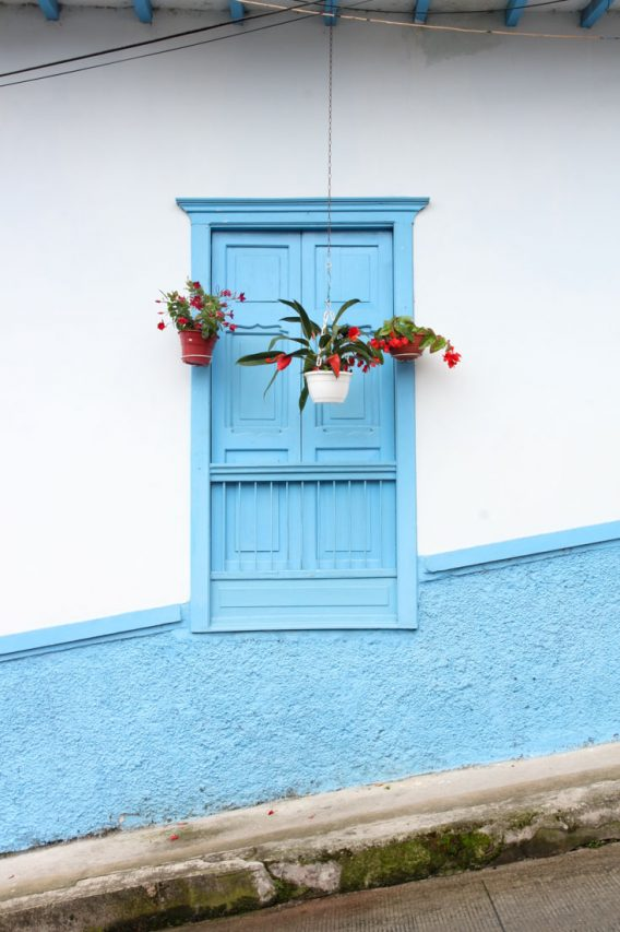 Sky blue window with hanging posts of red flowers