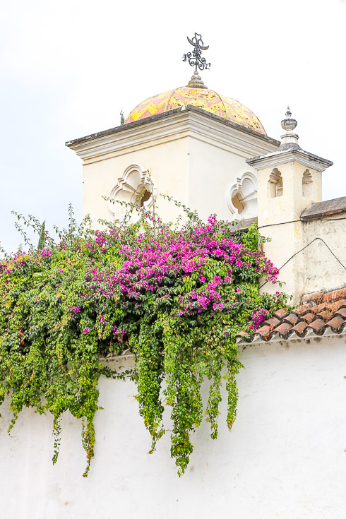 Photo of a cupola with gold dome and azaleas growing over terracotta tile lined fence