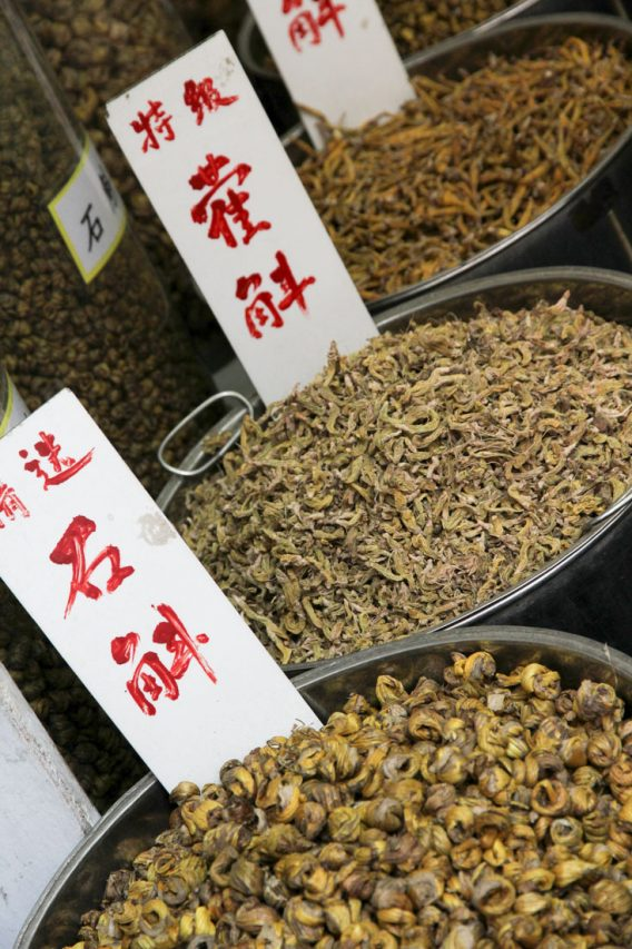 Chinese herbal medicines for sale