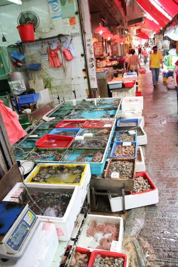 Seafood for sale in plastic tubs on street