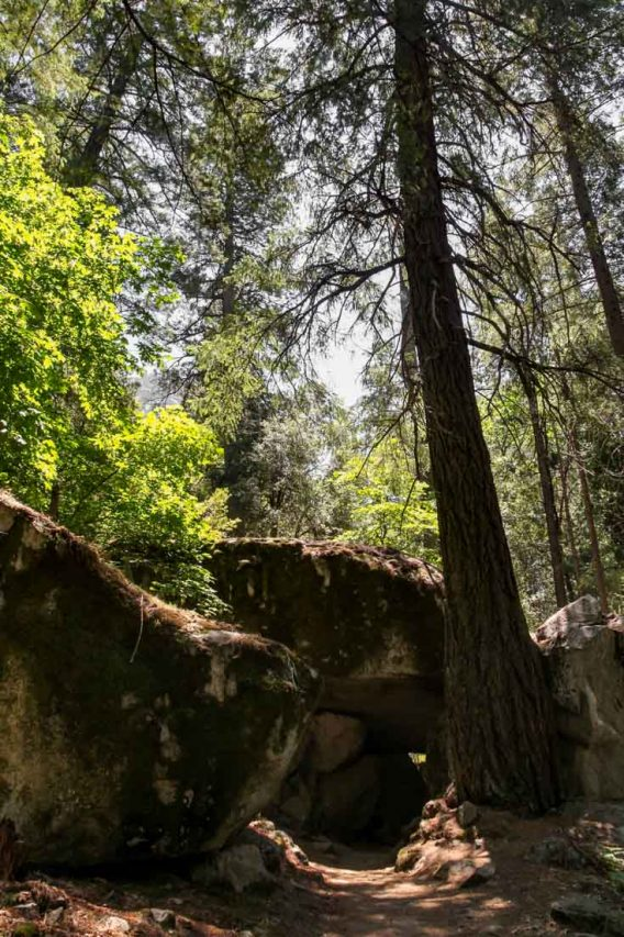 Image of tunnel through large boulders in forest