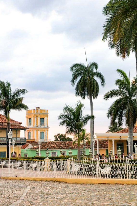 Plaza with palm trees and yellow tower in background
