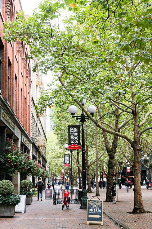 Tree lined pedestrian mall in historic neighbourhood