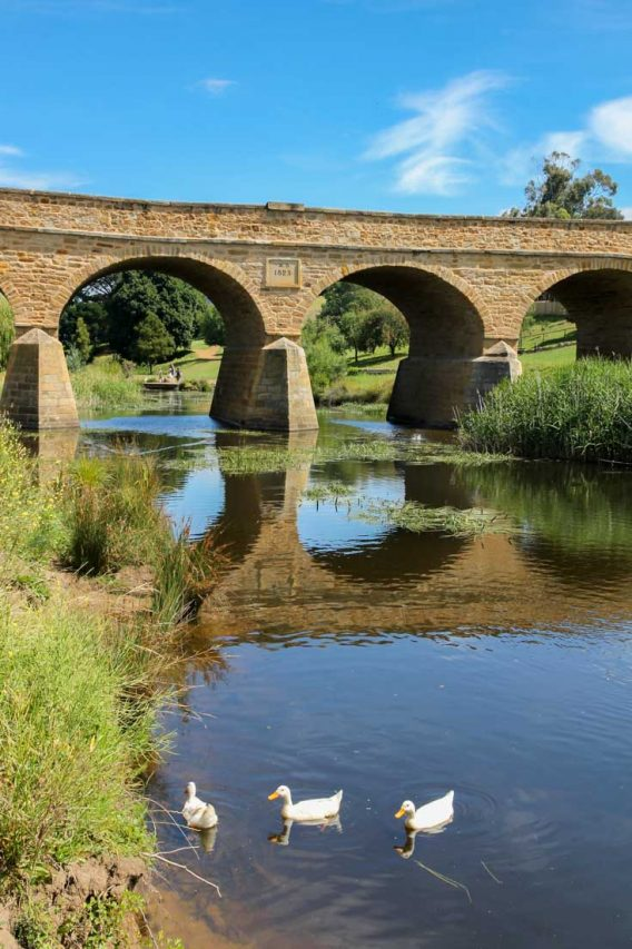 Sandstone bridge with river and ducks in foreground